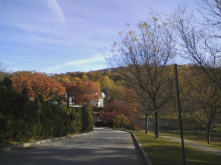 Roslyn in Fall